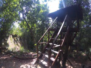 rumah pohon Bukit Peramun