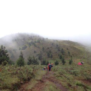Bukit teletubis yang tertutup kabut
