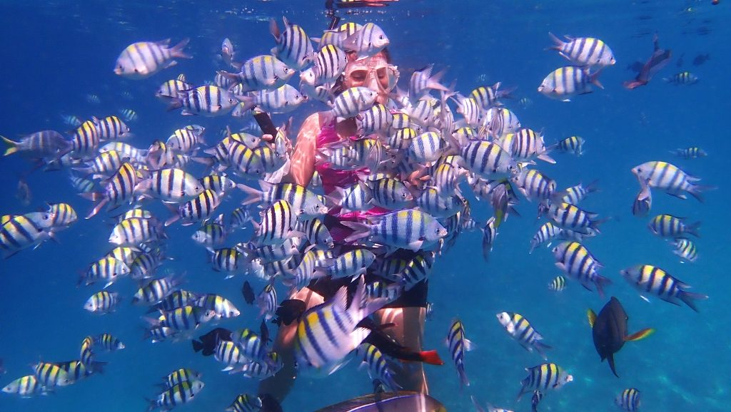 Snorkeling Rubiah