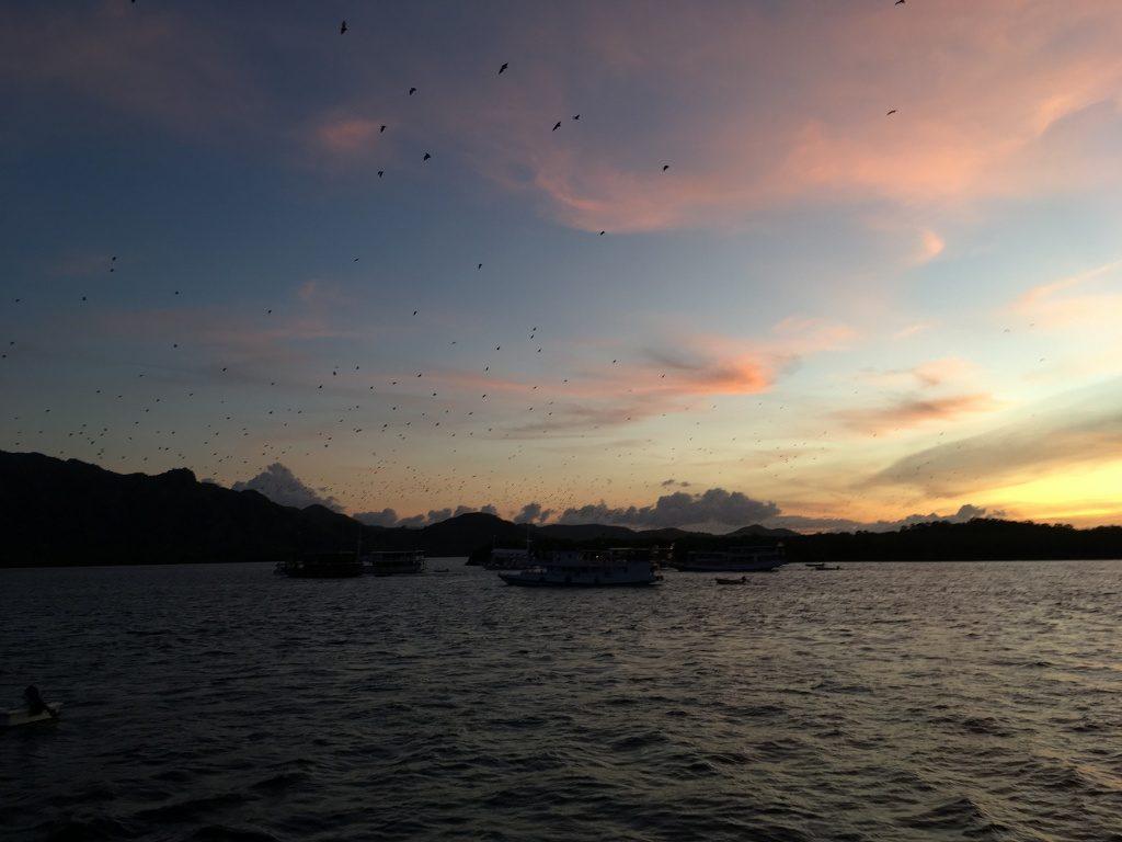 Pulau Kelelawar